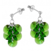 Cercei Fern Green - Cristale Swarovski