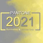 Ultimate Gray și Illuminating – culorile anului 2021
