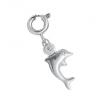 Charm Delfin