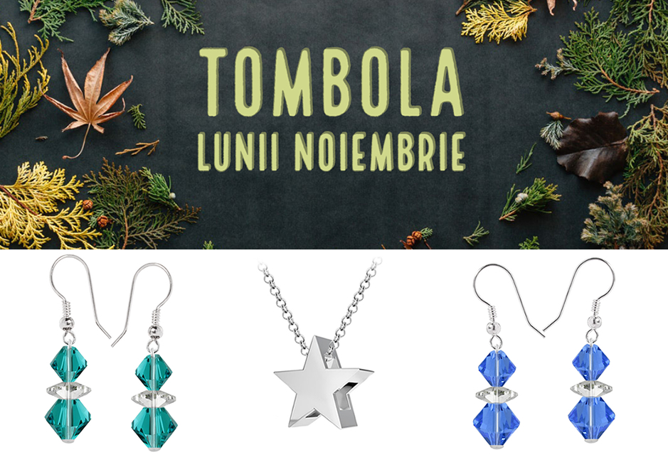 Tombola Lunii Noiembrie